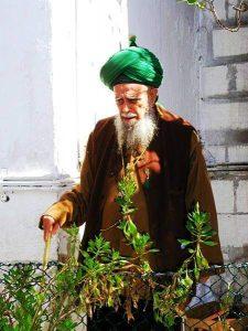 Offizielle und formale Sufi-Organisationen